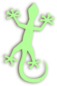 Gecko - Azie-vakantie.nl